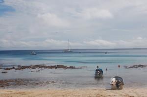 Fiji_octopus_island