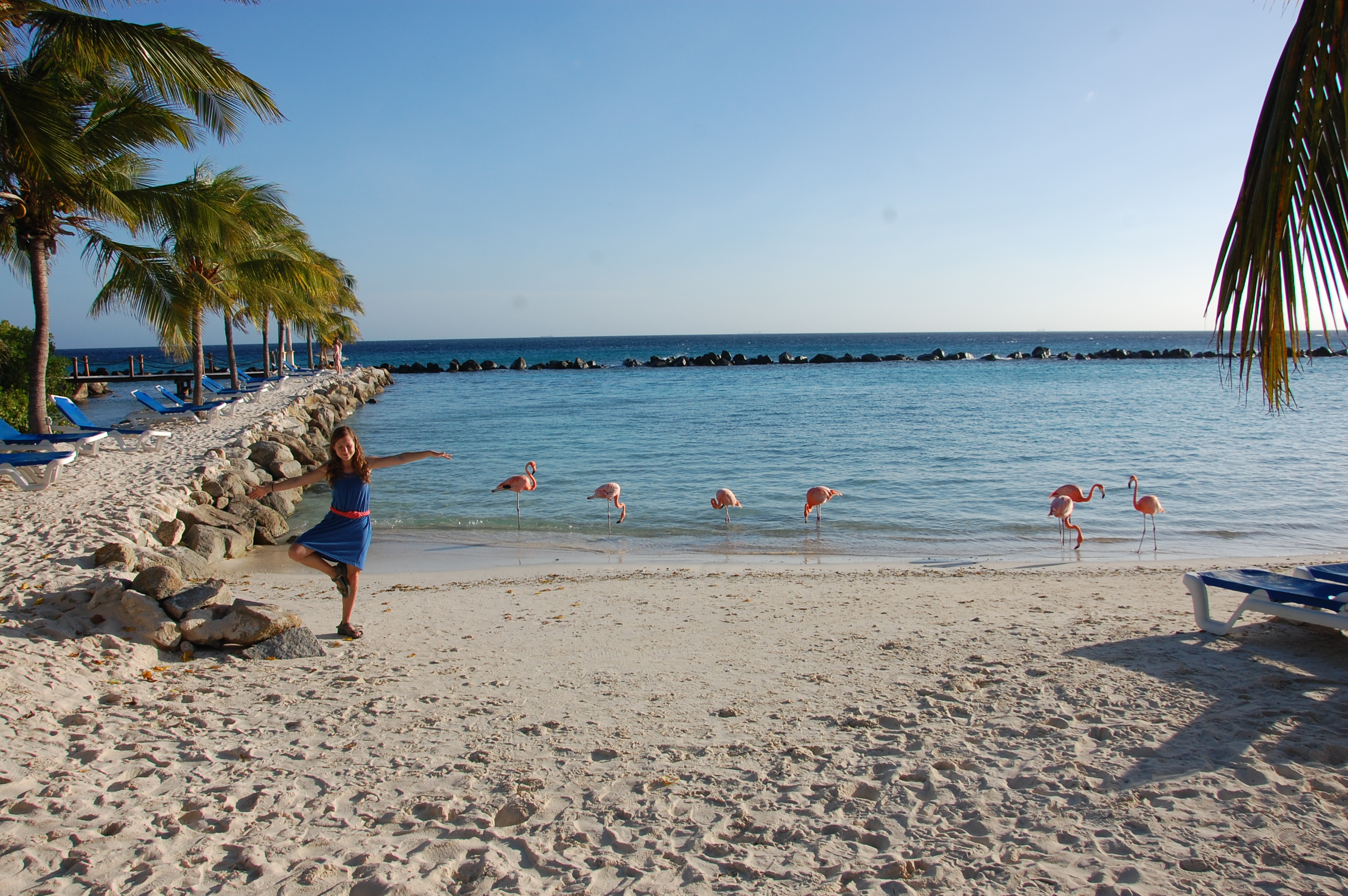 Vacaciones en Aruba - Directorio de hoteles y más original de la Guía de Viajes Aruba
