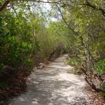 Renaissance Aruba Nature Walk