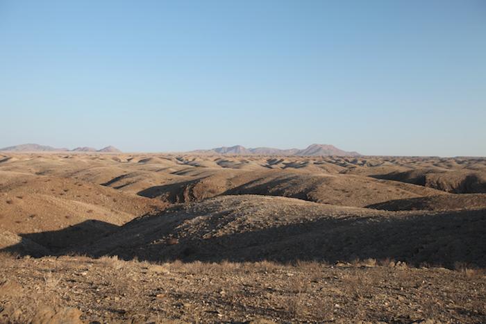 Desert Variety Namibia