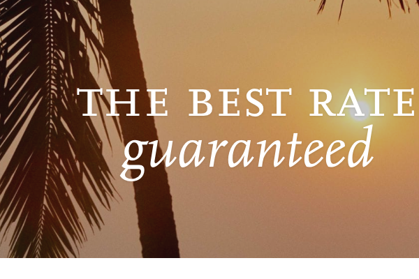 Best free option screener